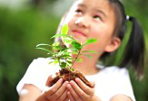A girl holding a potless plant