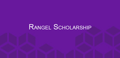 Click to learn more about Rangel Scholarship