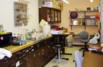 Professor Hirsch's lab