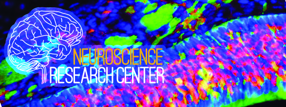 Center for Neuroscience Research - University at Albany - SUNY