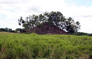 the largest mound at Las Viudas