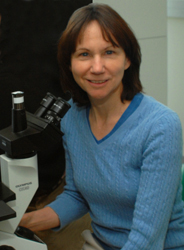 Breast cancer researcher JoEllen Welsh