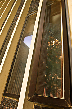 Residence hall windows