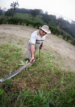 A farmer machetes his field