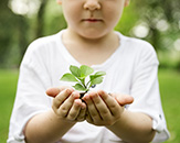 Child holds plant and soil in hands.