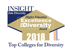 2018 Higher Education Excellence in Diversity (HEED) Award badge.