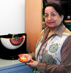 UAlbany chemist Jayanti Pande's work has been funded for 15 years by the National Eye Institute.