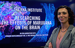 UAlbany research scientist Maria Basanta-Sanchez