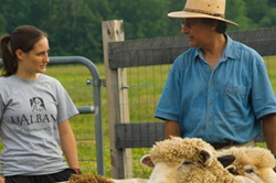 UAlbany student Erin Labarge is researching the effect of sheep on plant communities with biologist Gary Kleppel.