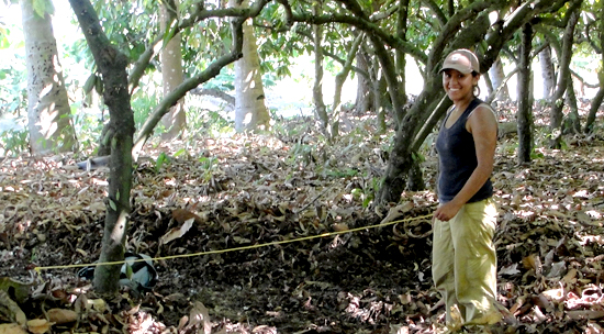 Graduate student Yahaira Nunez at the Soconusco Project in Mexico