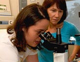 UAlbany summer intern Teresa Lloyd-Coronado looks through a microscope as Professor JoEllen Welsh looks on