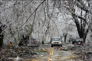 A care drives through a road with trees down after an ice storm in Worcester, Mass.