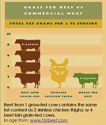 chart showing lower fat content of grass-fed beef