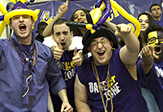 UAlbany's Big Purple Growl