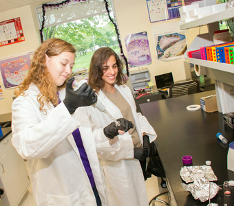 UAlbany Student Interns for SUNY Brain initiative