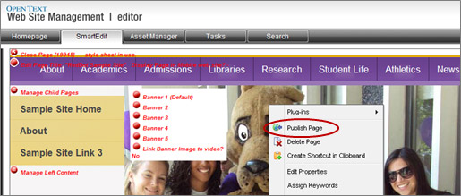 Publish Page menu