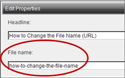 File name field