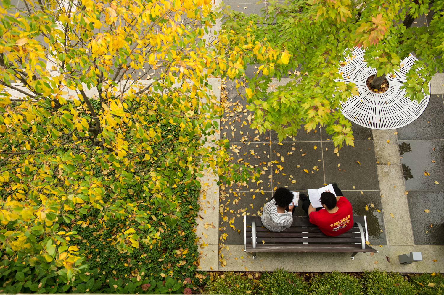 Aerial view of two students studying on the academic podium