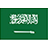 Saudi-Arabia-Flag-icon