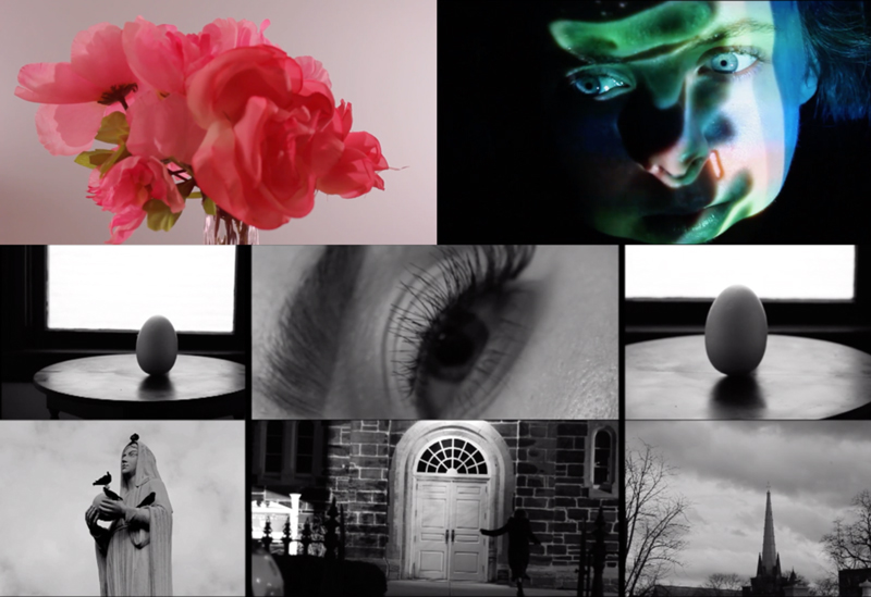 A montage of stills from student films