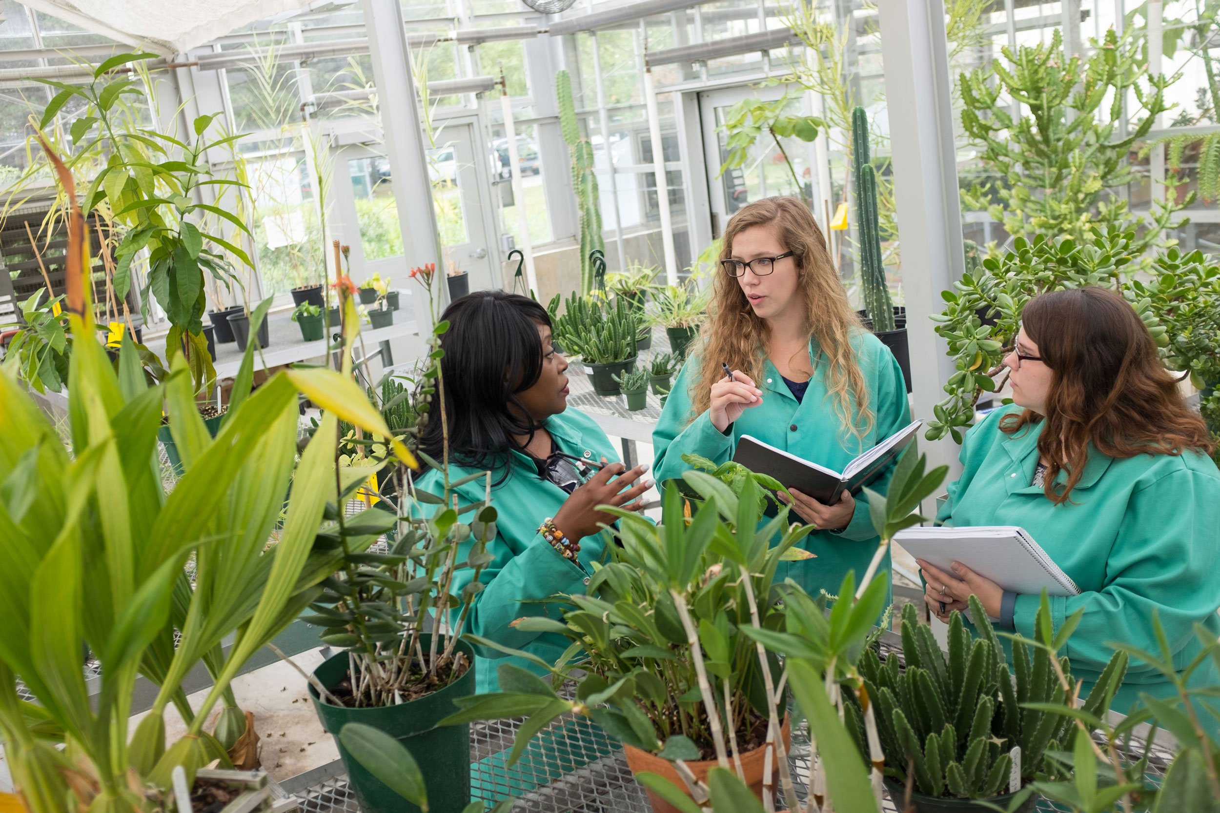 Chemistry Professor Dr. Rabi Musah works with her graduate students inside a greenhouse.