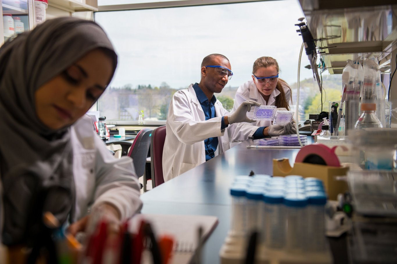 Undergraduate students work in a laboratory at the Cancer Research Center of the Health Sciences Campus.