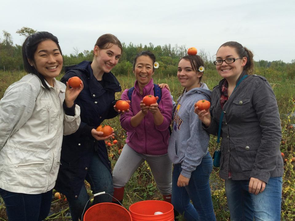 Students doing community service at a farm