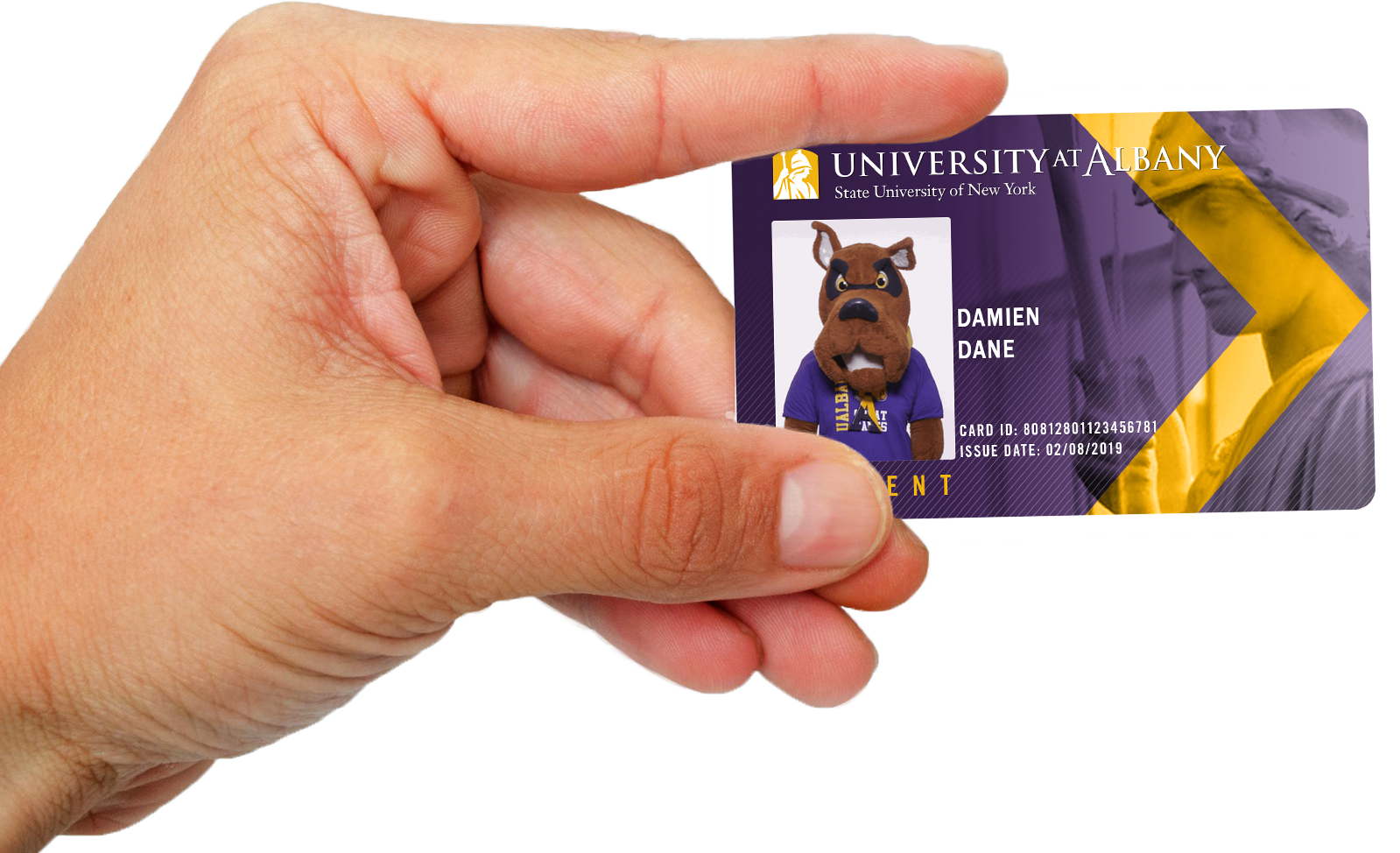 Hand holding a purple ID card with a dog mascot photographed on it. Gold chevron shape on the card
