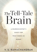 The Tell Tale Brain